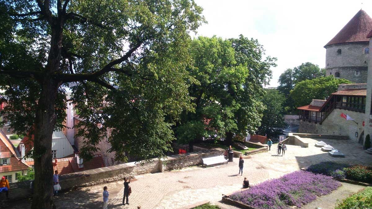 The Danish King's Garden - Estonia, Tallinn