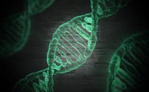 FDN Life Magazine - Issue 5 - All About Epigenetics & Advancing Human Consciousness